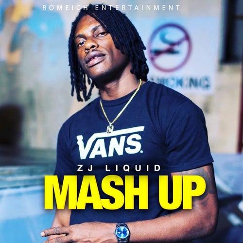 Mash Up von Zj Liquid