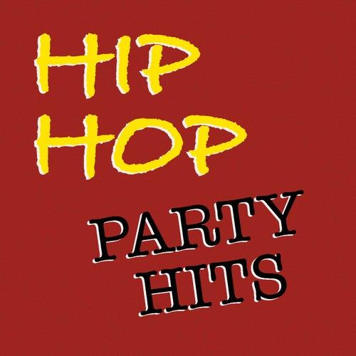 Hip Hop Party Hits de Various Artists