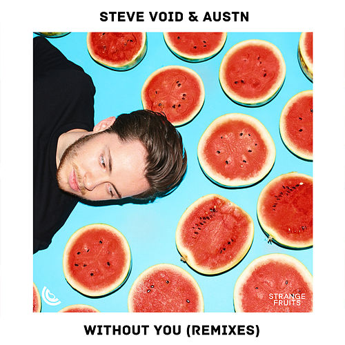Without You (Remixes) by Steve Void