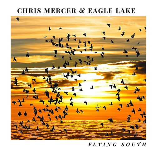 Flying South by Chris Mercer