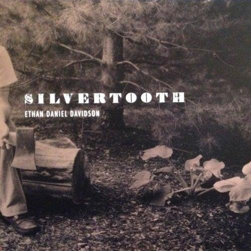 Silvertooth de Ethan Daniel Davidson