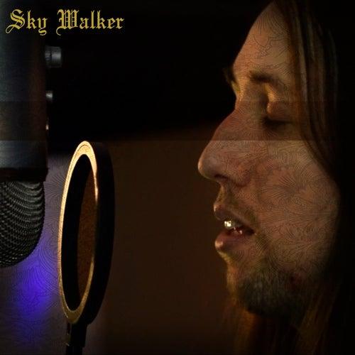 Sky Walker (Acoustic Version) de Tai Bow