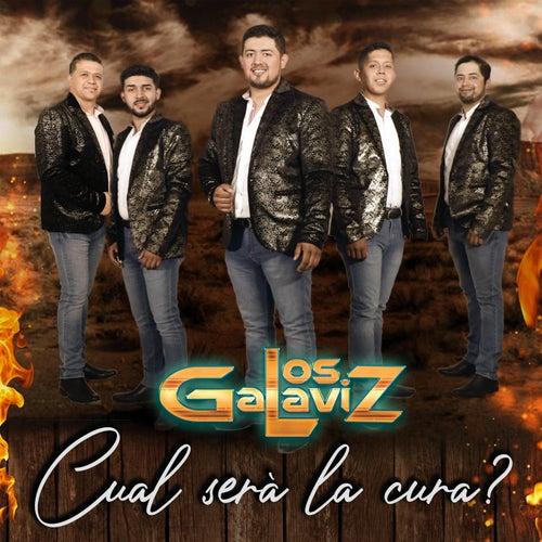 Cual Sera la Cura? by Los Galaviz