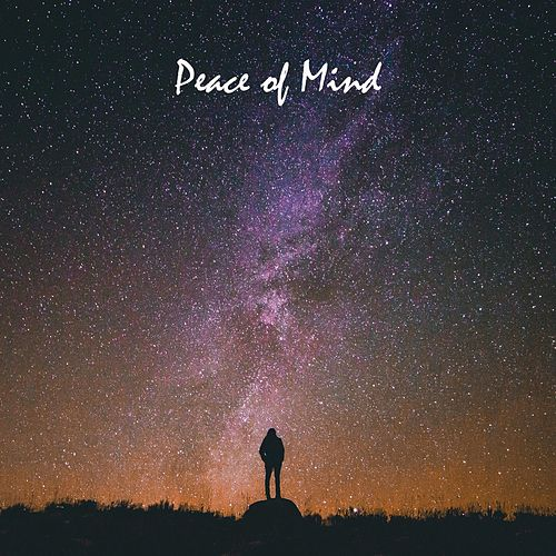 Peace of Mind de Zen Meditation and Natural White Noise and New Age Deep Massage