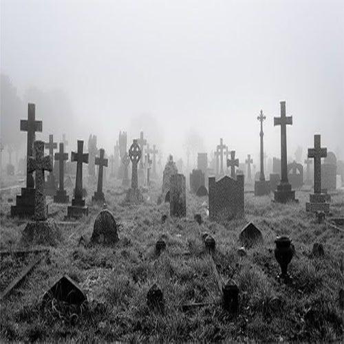 7 Porteiras Tem a Chave do Cemitério Peça Licença para Entrar de Cae lopes