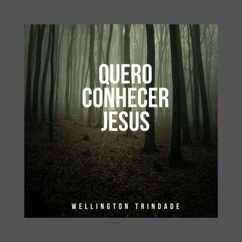 Quero Conhecer Jesus (Cover) de Wellington Trindade