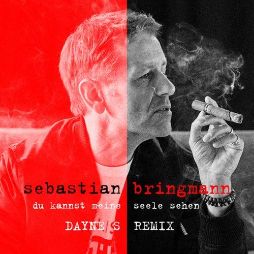 Du kannst meine Seele sehen (Danye S Remixes) von Sebastian Bringmann