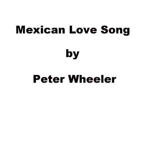 Mexican Love Song by Peter Wheeler