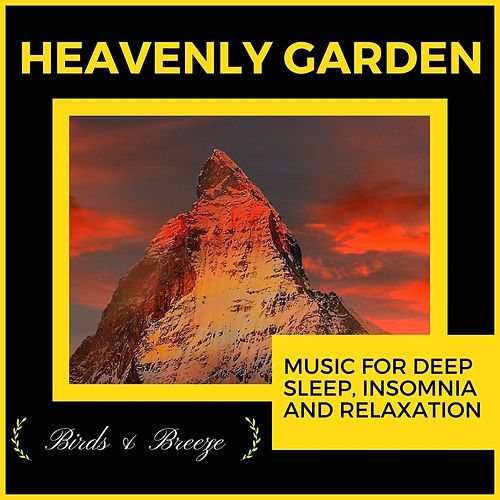 Heavenly Garden - Music For Deep Sleep, Insomnia And Relaxation di Ambient 11