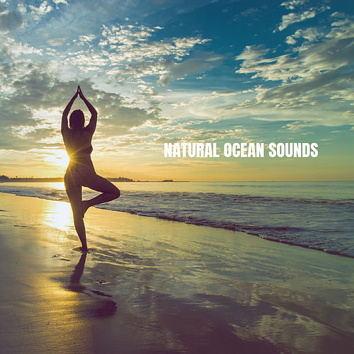 Natural Ocean Sounds de White Noise Babies