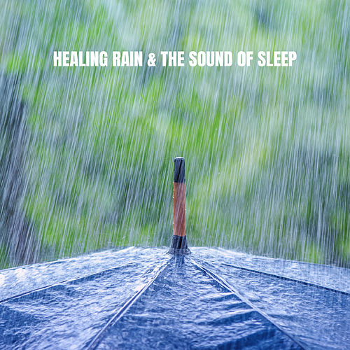 Healing Rain & The Sound of Sleep de Ocean Sounds Collection (1)