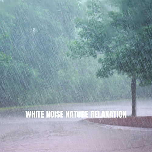 White Noise Nature Relaxation de Ocean Sounds Collection (1)