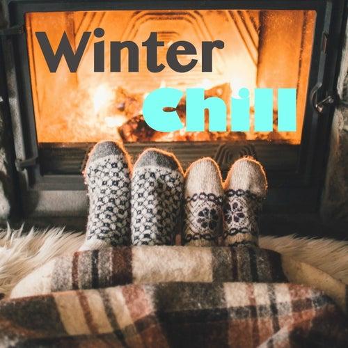Winter Chill de Various Artists