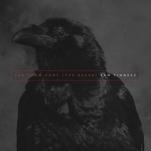 Far From Home (The Raven) de Sam Tinnesz