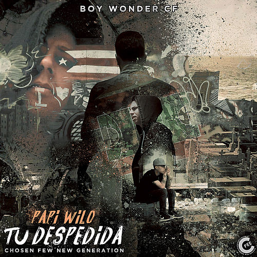 Tu Despedida by Papi Wilo