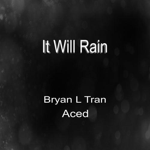 It Will Rain von Bryan L Tran