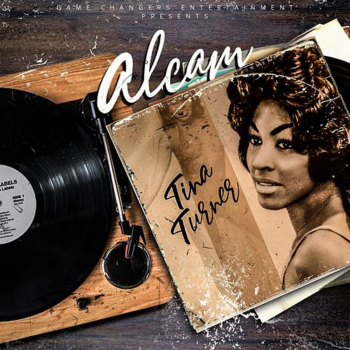 Tina Turner by Alcam