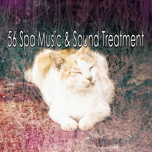 56 Spa Music & Sound Treatment de Best Relaxing SPA Music