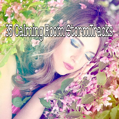 35 Calming Room Storm Tracks von Rain for Deep Sleep (1)