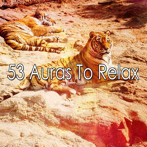 53 Auras to Relax von Best Relaxing SPA Music