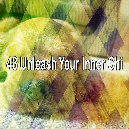 48 Unleash Your Inner Chi von Relajacion Del Mar