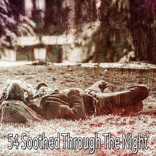 54 Soothed Through the Night de White Noise Babies