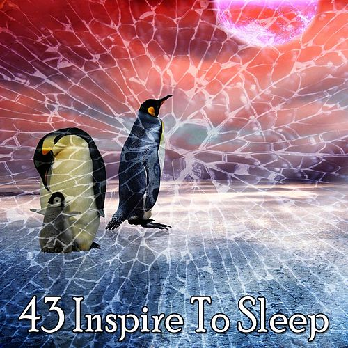 43 Inspire to Sleep von Relajacion Del Mar