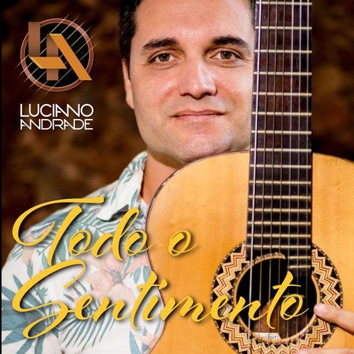 Todo o Sentimento (Cover) by Luciano Andrade