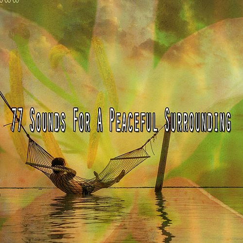 77 Sounds for a Peaceful Surrounding von Music For Meditation