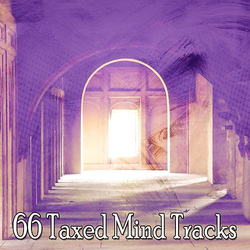 66 Taxed Mind Tracks by Lullabies for Deep Meditation