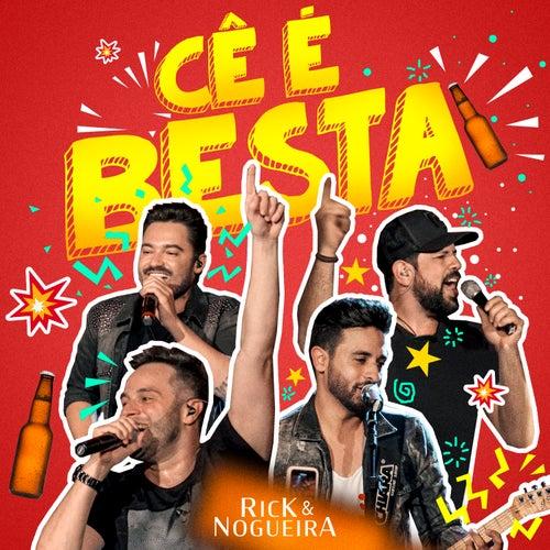 Cê É Besta (Ao Vivo) de Rick & Nogueira
