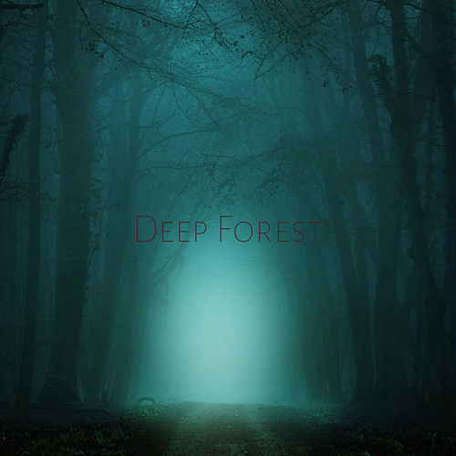 Deep Forest by 虎樹慶門