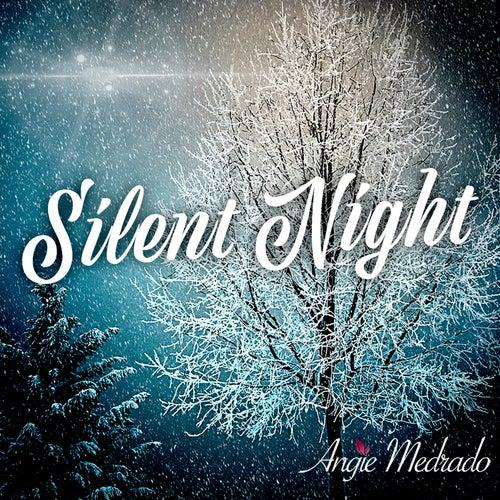 Silent Night de Angie Medrado