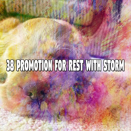 38 Promotion for Rest with Storm de Rain Sounds and White Noise