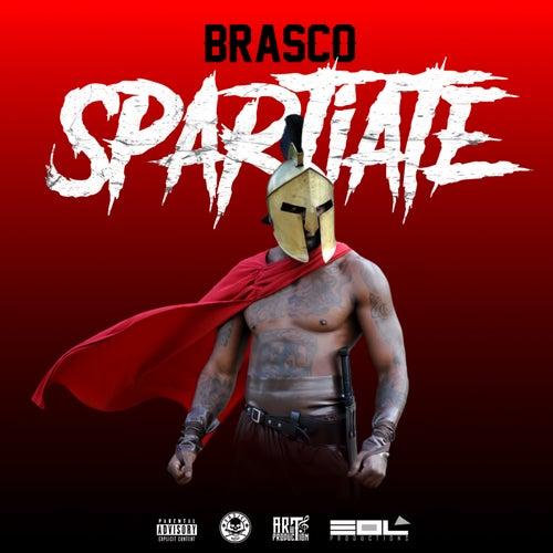 Spartiate by Brasco