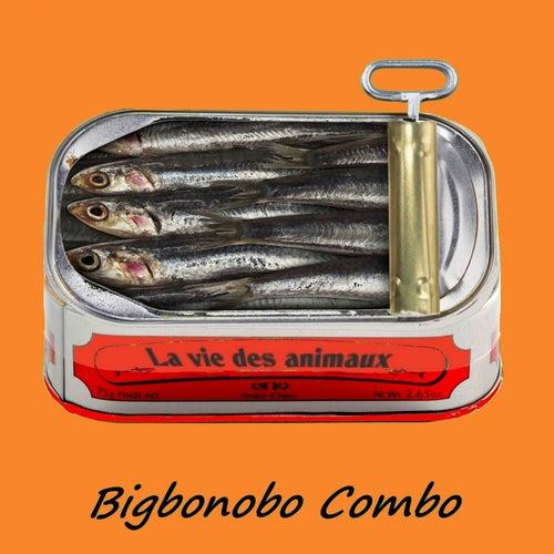 La Vie des animaux by Bigbonobo Combo