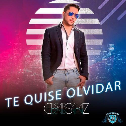 Te Quise Olvidar by Cesar Salaz