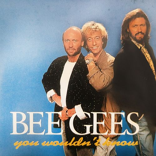 You Wouldn't Know by Bee Gees