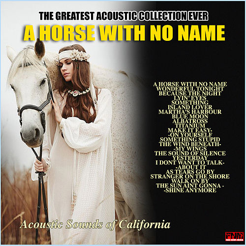 A Horse With No Name by Acoustic Sounds of California