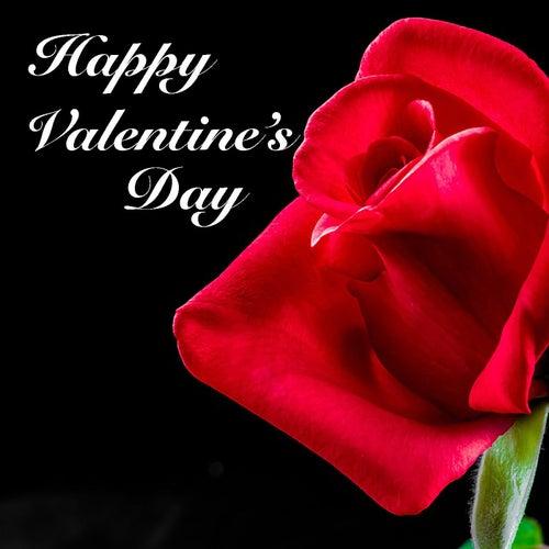 Happy Valentine's Day de Various Artists