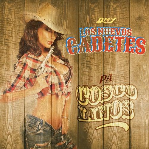 Pa Coscolinos by Los Nuevos Cadetes
