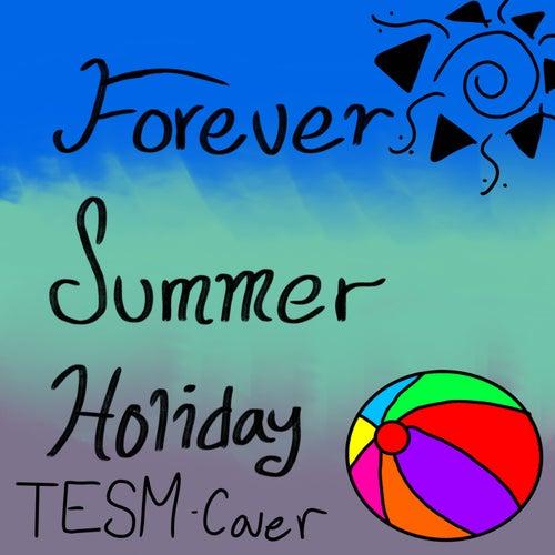 Forever Summer Holiday de Tesm
