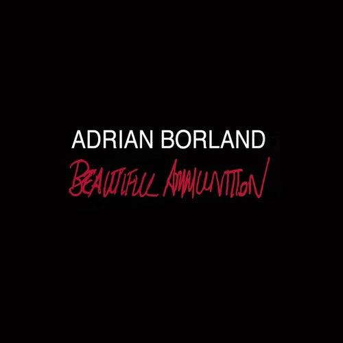 Beautiful Ammunition by Adrian Borland
