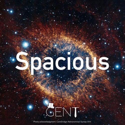 Spacious von Gent