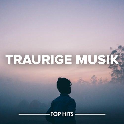 Traurige Musik von Various Artists
