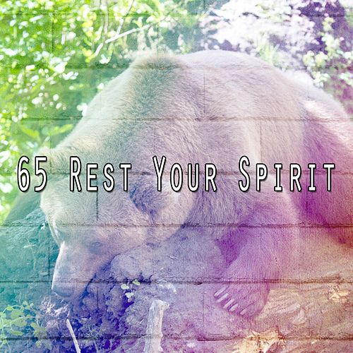 65 Rest Your Spirit by Relaxing Spa Music