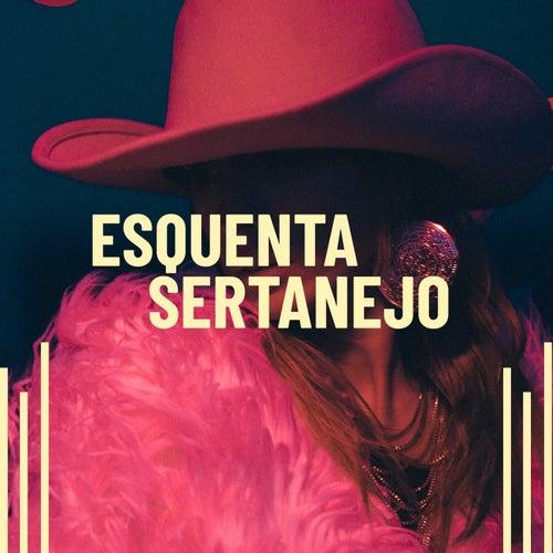 Esquenta Sertanejo de Various Artists