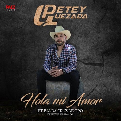Hola Mi Amor (feat. Banda Cruz De Oro) by Petey Quezada