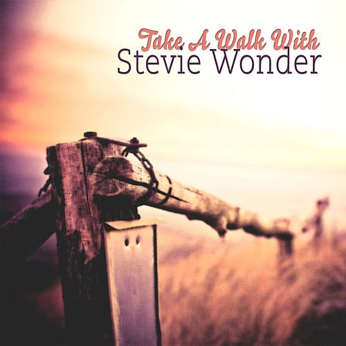 Take A Walk With von Stevie Wonder