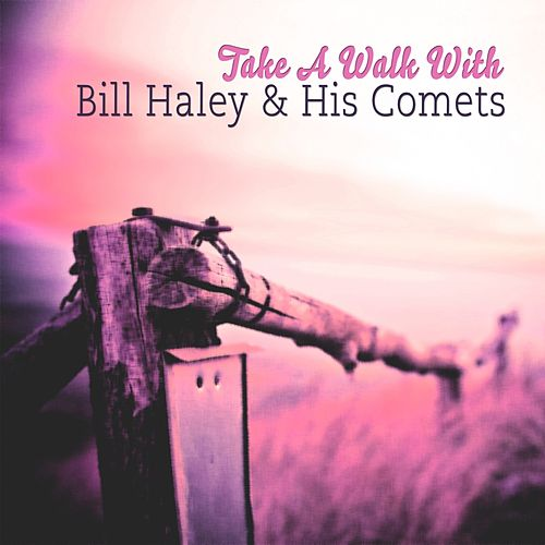 Take A Walk With by Bill Haley & the Comets